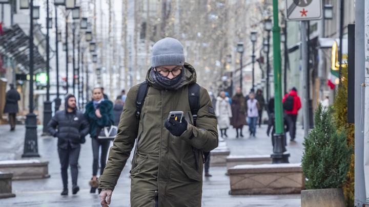 Синоптики прогнозируют теплую зиму в Санкт-Петербурге