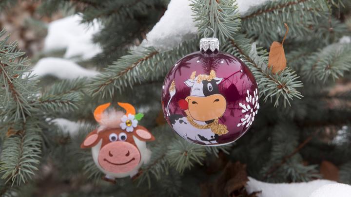 Синоптики дали прогноз на 31 декабря в Новосибирске