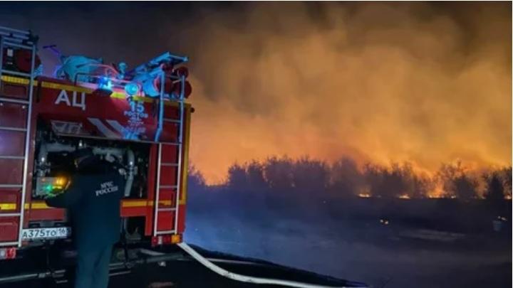 От угона до поджога: Назван виновник самого крупного лесного пожара в Ростовской области