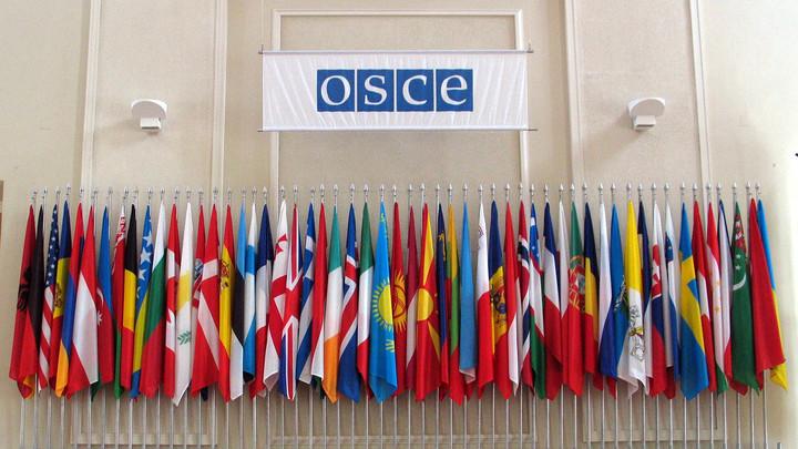 Генсек ОБСЕ: Всю тяжесть боев в Донбассе несут гражданские, необходимо немедленно прекратить огонь