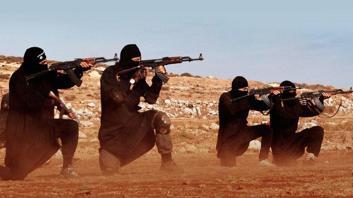 Сирия: крысы рвут друг друга