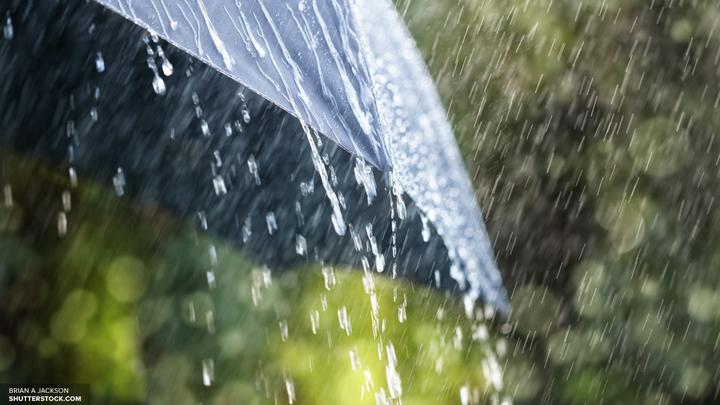 Москвичам пообещали грозы с порывами ветра под занавес весны