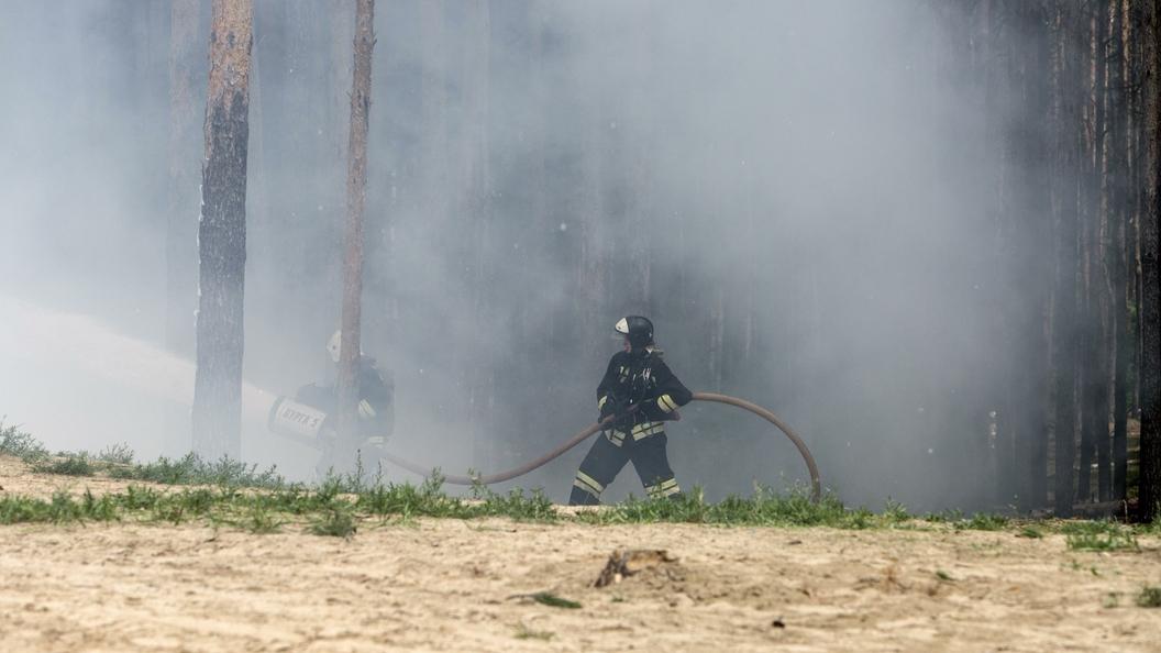 ВПортугалии разбился пожарный самолет другого государства