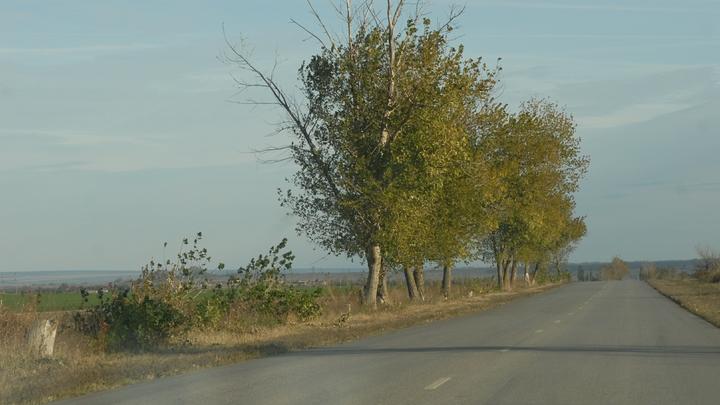 Жители Выдрино узнали, что их деревни не существует