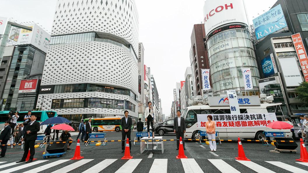 В Японию проникли ядовитые муравьи, смертельно опасные для человека