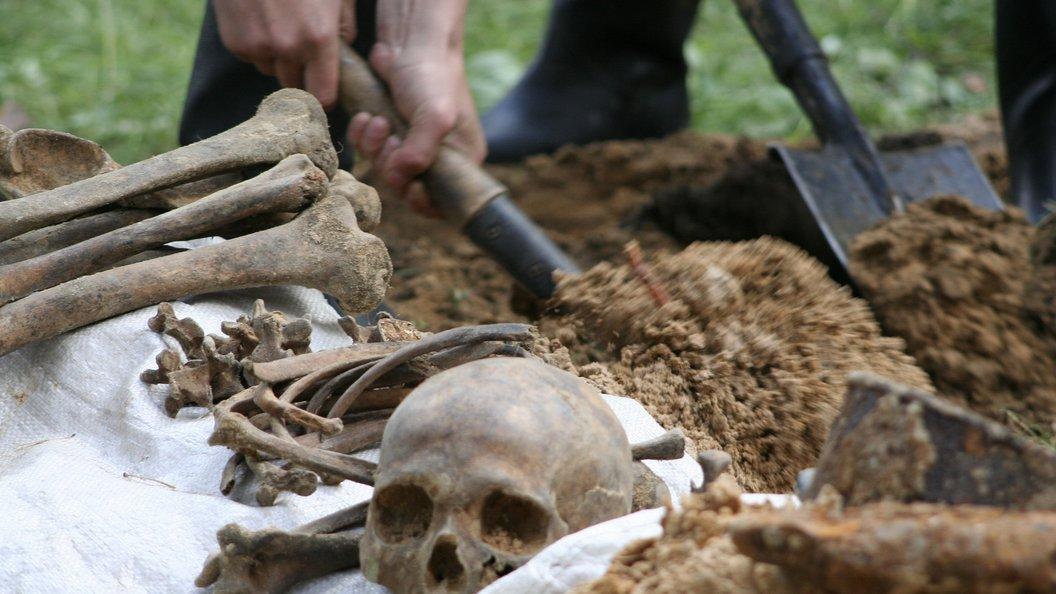 Археологи откопали в Китае кости древних людей-великанов