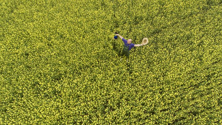 Итальянский фермер создал на своем поле портрет Путина