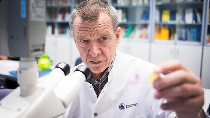 Японские ученые показали развитие раковой опухоли в прозрачной мыши