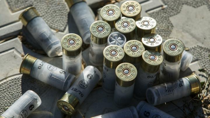 Детсад с сюрпризом: в подвале детского учреждения нашли склад боеприпасов