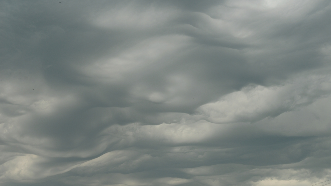 МЧС предупреждает: На Москву идет шквалистый ветер с грозой