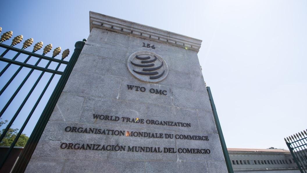 В России задумались о выходе из ВТО
