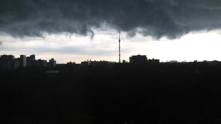Жители России рассказали о последствиях аномального лета