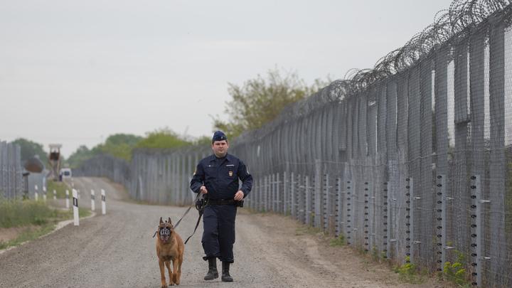 В Венгрии проверяют десятки международных поездов из-за заложенной бомбы