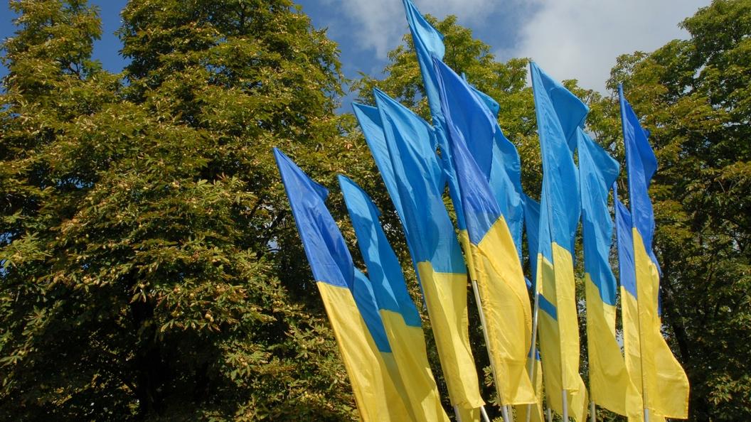 На Украине обнажившуюся перед Порошенко и Лукашенко женщину могут посадить на 5 лет