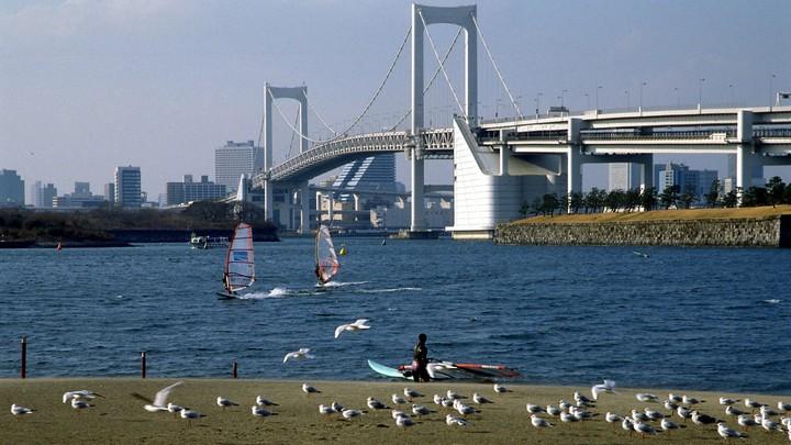 Более 6 тысяч человек госпитализировали в Японии из-за недельной жары