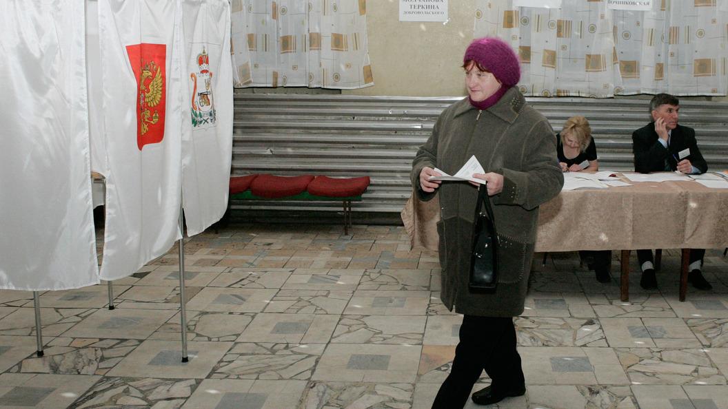 К выборам 10 сентября в России создадут соцсеть для наблюдателей