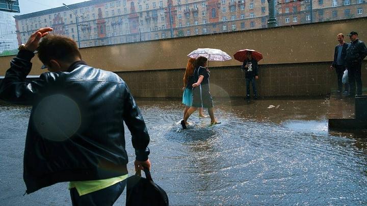 МЧС объявило штормовое предупреждение в Москве