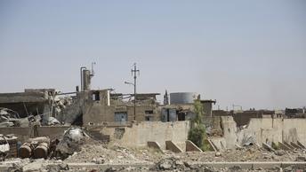 В приютах Мосула нашли 48 детей из России