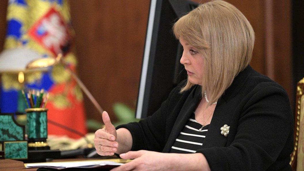 Памфилова призвала общественников создать перекрестную систему контроля на выборах