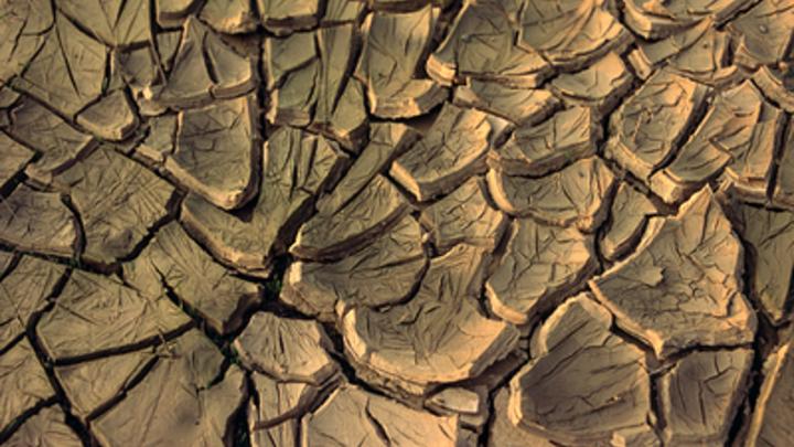 Челябинская область летом пострадает от засухи