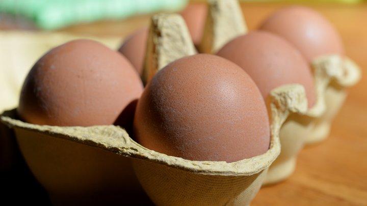 Бельгийские фермеры поставили в Германию более 28 млн зараженных куриных яиц
