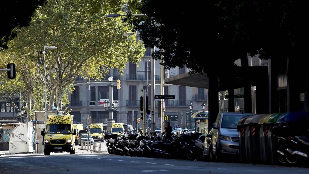 Предполагаемый террорист сам явился в полицию - СМИ