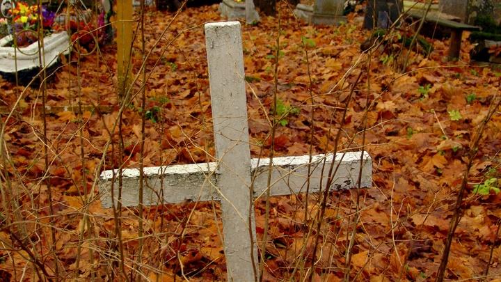 Поиск могил по GPS: В России создадут первый кладбищенский навигатор