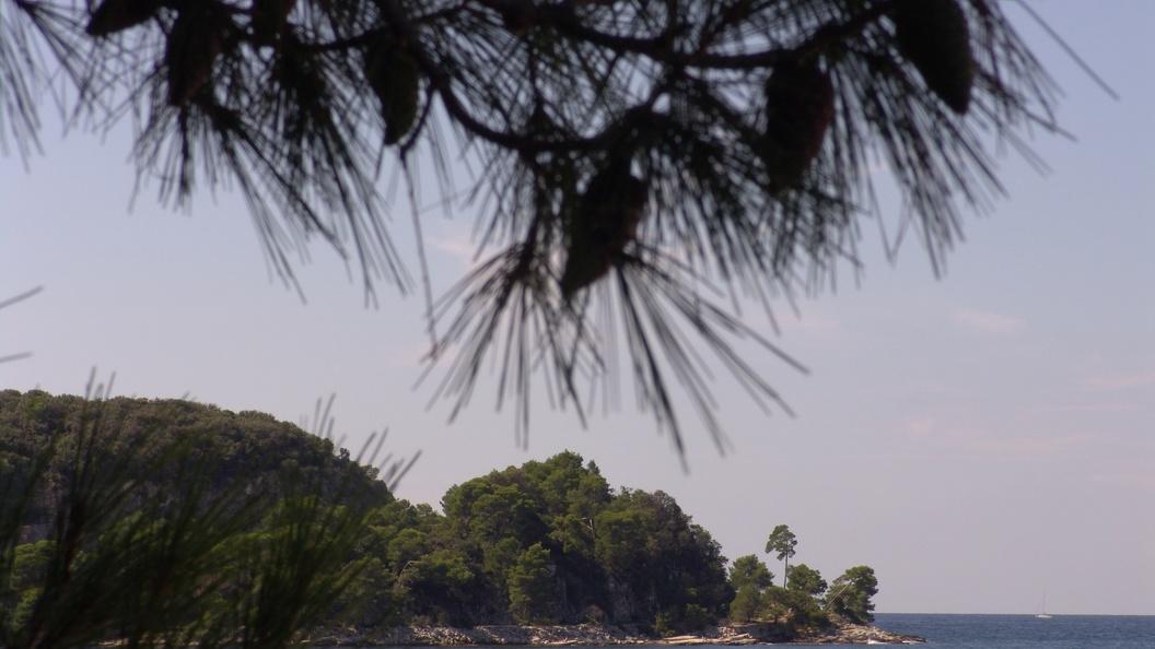 Свечка на могиле спровоцировала огромный пожар в Хорватии