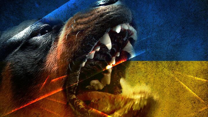 Украина в кольце врагов