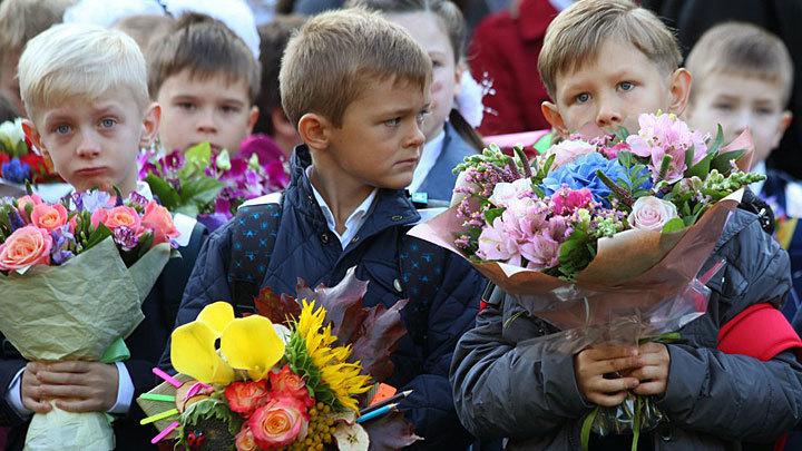 Тупизна на выходе. Остановитесь!: Михеев призвал Минпросвещения не играть по правилам Запада