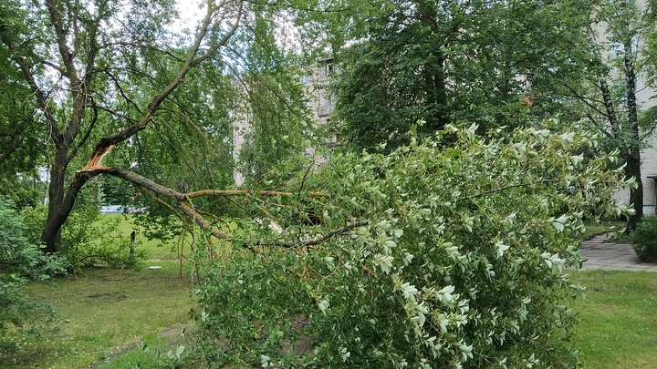 В Сочи объявлено экстренное предупреждение из-за сильных дождей и шквалистого ветра