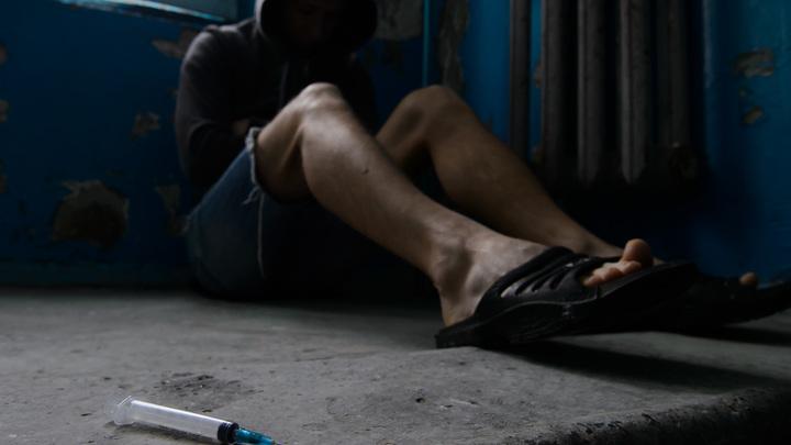 Пять организаторов «фабрики наркотиков» пойдут под суд в Московской области