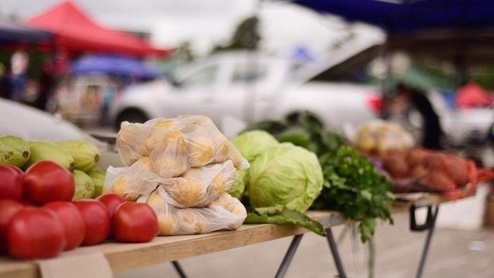 В Краснодаре на ярмарки выходного дня привезли 50 тонн продукции