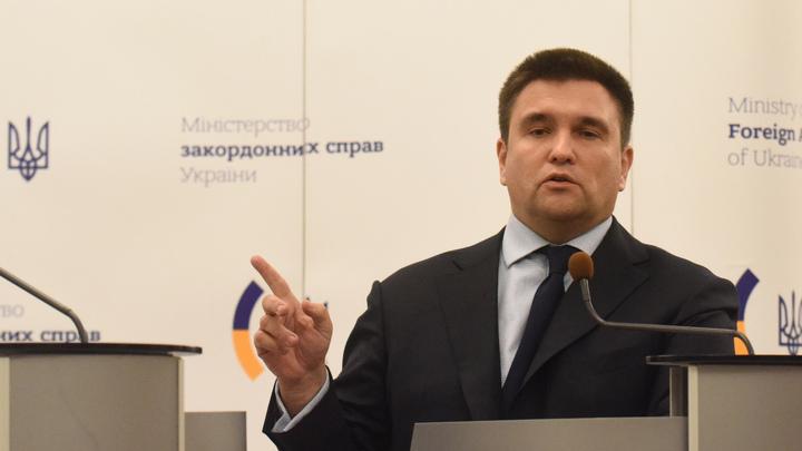 Глава МИД Украины посетовал, что не может контролировать выдачу паспортов в Венгрии