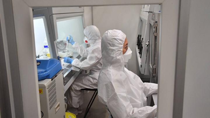В Курганской области медики меняют схему работы с больными коронавирусом