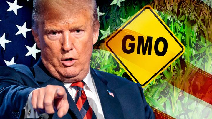 Трамп подсадит американцев на ГМО