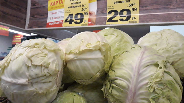 Накормите!: Голодающие сравнили эпидемию с войной