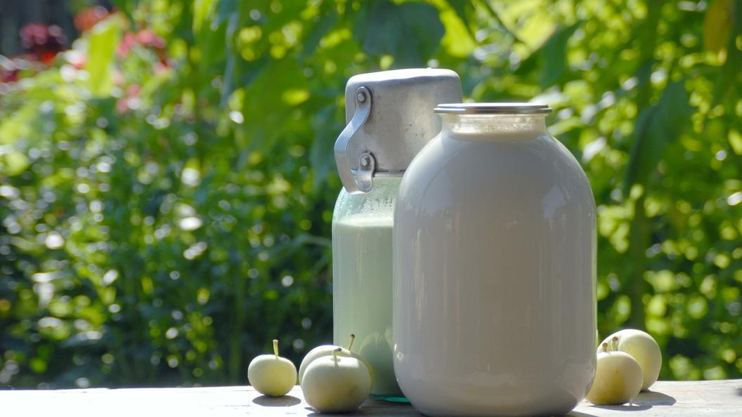 Стало известно, сколько поддельного молока в российских магазинах