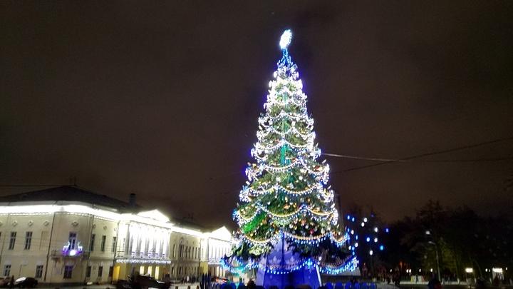 Завтра во Владимире начнут устанавливать главную городскую елку