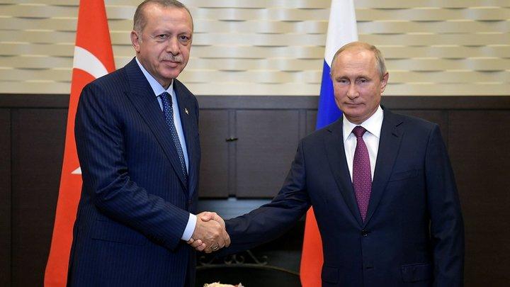 В телефонном разговоре Путин и Эрдоган обсудили будущее заседание Совета сотрудничества