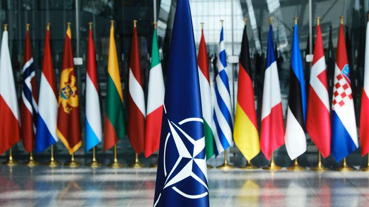 Когда НАТО окончательно развалится