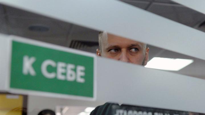 Тайн больше нет: Навальный прятал кота Скрипалей
