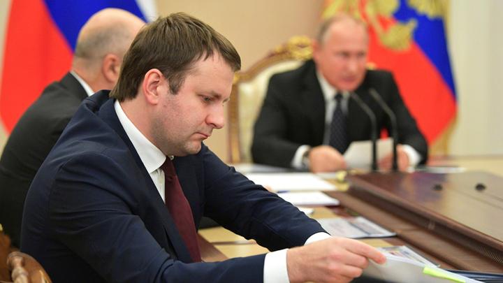 Вассерман, Милонов и Исаев: «Если бы я был президентом»