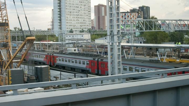 На МЦК остановились поезда «Ласточка»