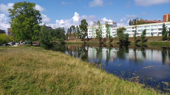 В начале августа в Новосибирск вернётся 30-градусная жара