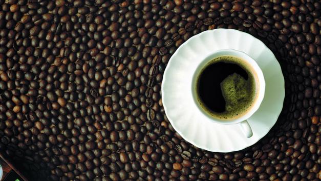 Боливия намерена поставлять в Россию говядину, какао и кофе
