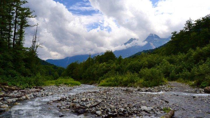 В Сочи закрыли часть биосферного заповедника