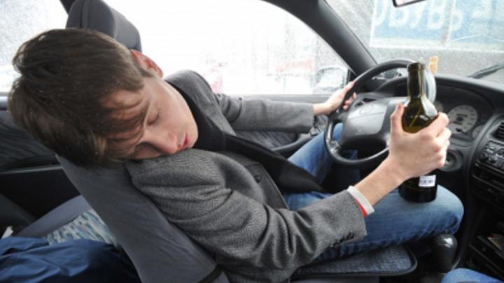 Нетрезвый водитель насмерть замерз в Новосибирской области