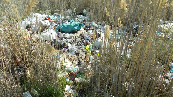 У дельты Волги большие проблемы: Астраханская область погребена под мусором