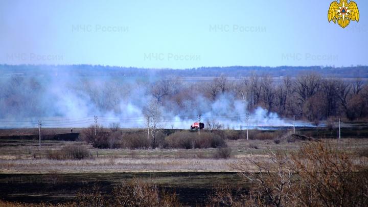 Власти Самары ввели послабление на разжигание костров у лесных массивов